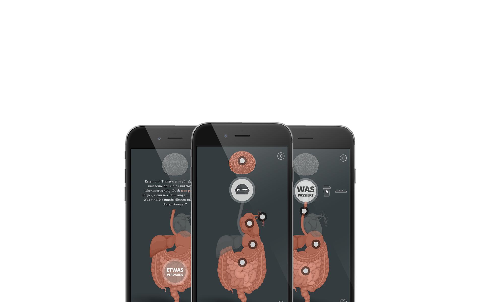 Mobile App - Design, Illustration, Animation Screens, Grafik Design Freelancer Berlin