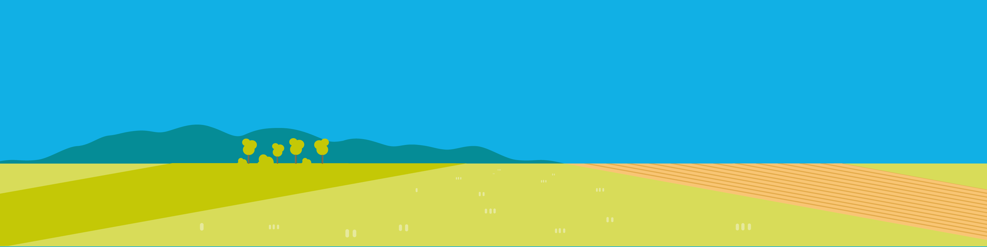 Landschaft Illustration, Animation, Erklärvideo, Motion Design | CC Buchner