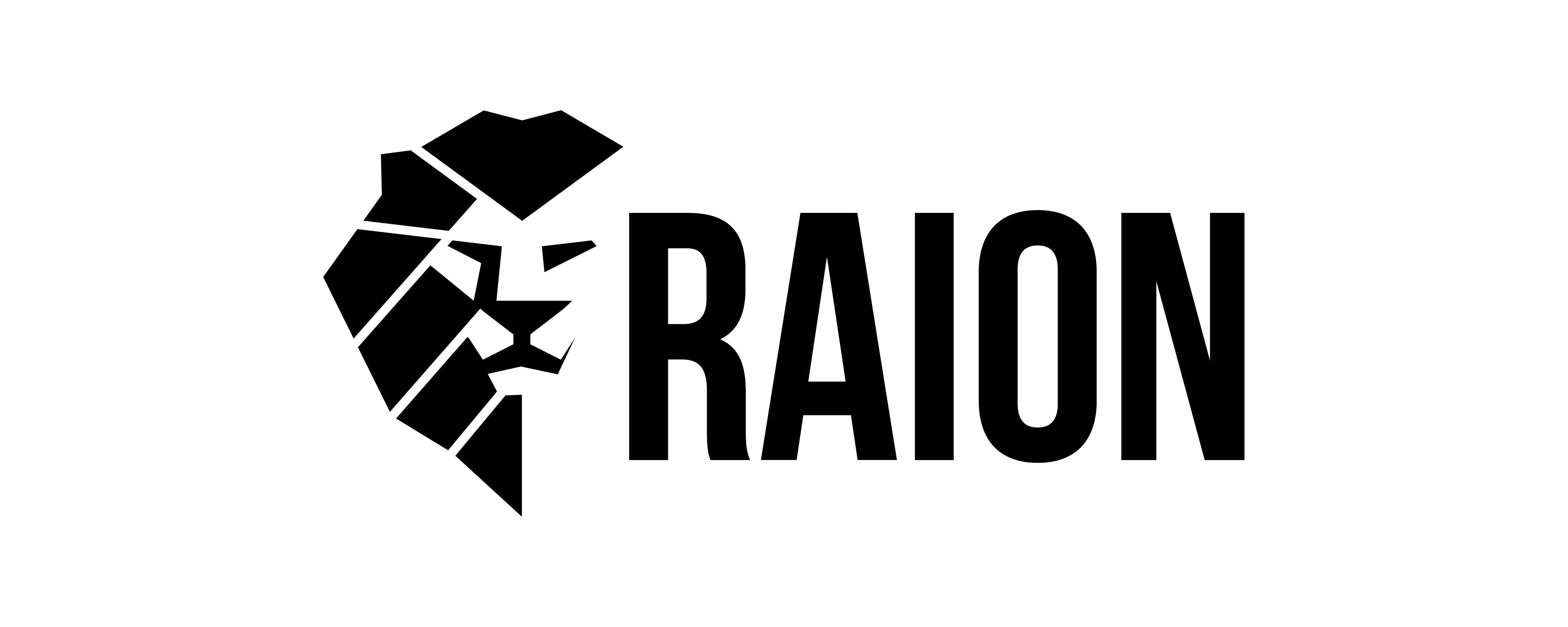 Raion Logo Design, Schriftzug Branding, Freelance Grafik Designer Berlin