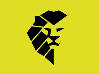 Kampfsport Logo Raion